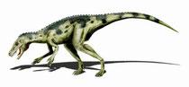 Bild eines Herrerasaurus