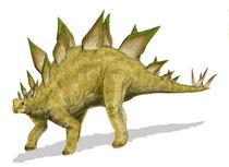 Bild eines Stegosaurus