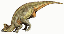 Bild eines Lambeosaurus
