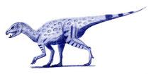 Bild eines Heterodontosaurus