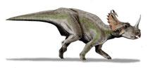 Bild eines Centrosaurus