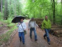 Trotz des kurzen Regenschauers: Eine gelungene Wanderung durch den Leuscheid