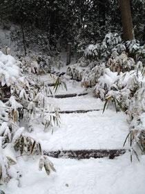 雪の六義園 藤代峠