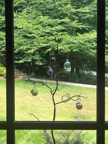 Bird feeder tree handmade in the UK, hummingbird feeder in the USA.