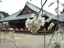 画像:水戸藩 藩校「弘道館」