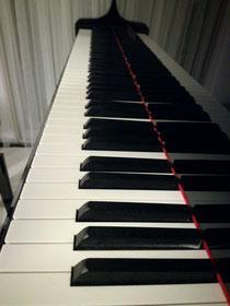 講師 柴田 祥子   自己紹介: エリザベト音楽大学大学院を終了。選抜にて卒業演奏会、修了演奏会に出演。パリ、エコールノルマル音楽院をドュウジエムプリにてディプロマ取得。 これまで、大学での後進の指導、演奏会の企画・派遣、コンクールピアニストを務める傍ら、ホテル、レストラン、病院、デパート、ラウンジにて演奏活動を行う。 現在、全日本ピアノ指導者協会会員。セレモニープレイヤーとして活動をしている。  クラシックからジャズまで幅広いレパートリーを持ち、豊かな表現力と心温まる演奏をするピアノ奏者である。   好きな言葉:成せばなる。