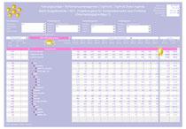 Segmentierung für einen ausgewählten Key Performance Indicator