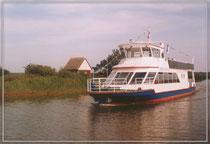 "MS ""Ahrenshoop"" Neubau 1999"