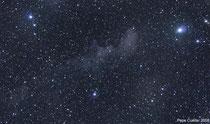 Nebulosa de reflexión IC2118