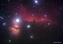 Nebulosa oscura Cabeza de Caballo