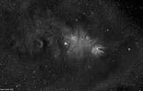 Región de formación estelar NGC2264