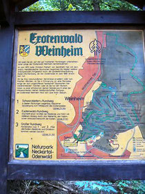 Wegekarte für den Exotenwald
