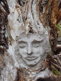 Baumwesen