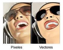 de imagen a vectores