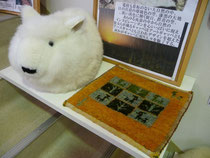 羊から採取されるウールで手織りされる絨毯がギャッベです。