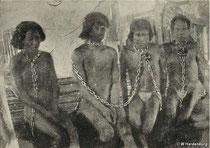 Miles de indígenas fueron esclavizados y asesinados durante la fiebre del caucho. Fot. Survival