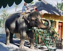 Paseo en elefante. Foto: FAADA