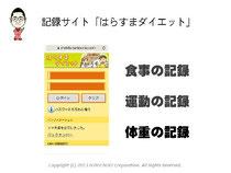 第5回アクセス解析セミナーin大阪 仙田利夫スライド 記録サイトはらすまダイエット