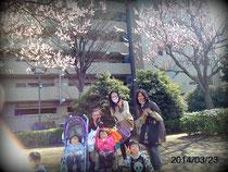 プレ♡お花見after the circle