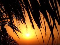 Sonnenuntergang, Abendsonne, Stressprävention, Gesundheitsförderung