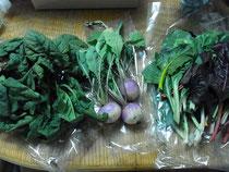 一昨日買いそこなったメルカートのお野菜もゲット!