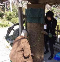 北鎌倉・浄智寺ではお坊様にも覗いて頂きました☆