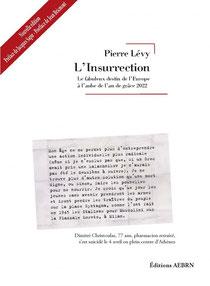 L'insurrection, Pierre lévy (2012).