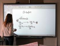 Mit Geldern des Fördervereins wurde ein Smartboard angeschafft