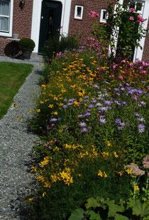 Gartengestaltung mit Pflanzen: Blütenpracht einer Staudenpflanzung im Spätsommer.