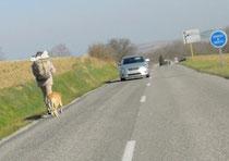 Un pèlerin sur la route près de Fanjeaux (Aude), haut-lieu des Doninicains