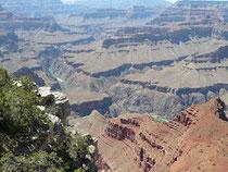 Grand Canyon 360°