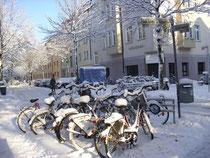 Fahrräder im Schnee (2010)         WK