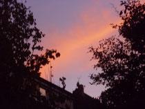 Abendhimmel   2011          WK