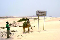 Die Wüste Viana