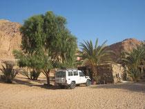 sinai oasis ein khodra