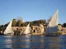 circuit egypte - Le Nil à Assouan