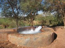 Source chaude à Dakhla