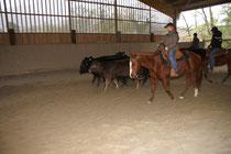Lil am Cowhorsekurs