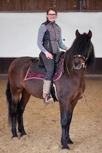 Westernreiten, Reitunterricht, Pferdetraining, Bodenarbeit