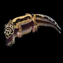 Leopardgecko 'Eternity' Tangerine Striped Bandit