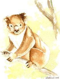 aquarelle d'un koala