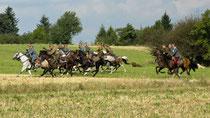 Kavallerimeisterschaft, Kavallerieverband, Rossfoto Dana Krimmling