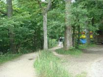 Seeuferweg im Bereich des Chiemgauhofs