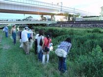 7月4日 芦屋川の河川敷にて