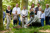 Friedwald Beisetzung Naturbestattung