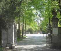 Hauptfriedhof Würzburg Copyright Jarlhelm by Wiki