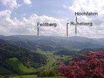 Naturbestattung Ruheberg Schwarzwald
