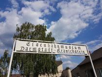 Der 116. Geocaching Stammtisch Darmstadt-Dieburg