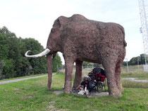 Tag 3: Picknick im Schatten des Mammuts