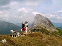 http://images.summitpost.org/original/762770.jpg